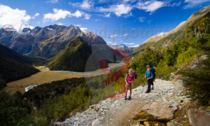 Routeburn Track overlooking Routeburn Flats
